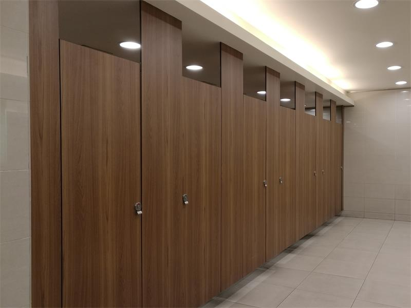 Ceiling hung toilet partition